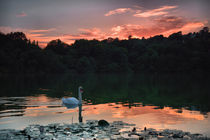 Decoy Lake Sunset by kevin wise