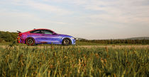 BMW Hamann M4 Art Car by fabinator