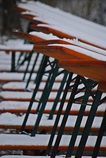 Winter im Englischen Garten... 13 by loewenherz-artwork