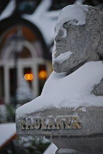 Winter im Englischen Garten... 12 by loewenherz-artwork