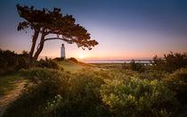 Landschaft-natur-fineart-licht-pixel-fotografie-by-kristian-goretzki-2