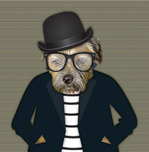 Hipster Border Terrier Dog