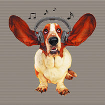 Basset Hound Music Dog by Tanya  Hall