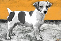 '~Jack Russell Orange ~' von Sandra Vollmann
