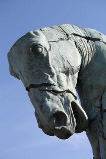 Pferd by Bernd Eglinski
