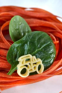 Nudeln vom Eigenerzeuger | Pasta by lizcollet