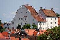 Schlossmuseum Murnau im Blauen Land by lizcollet