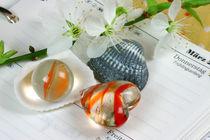 Spring[in]Time | Springtime von lizcollet