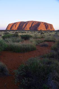Uluru - Sonnenuntergang by usaexplorer