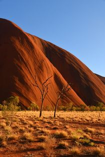 Ayers Rock in the afternoon by usaexplorer