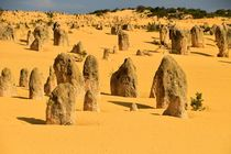 Nambung NP (Western Australia) by usaexplorer