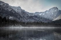 Line of fog on the Lake by Gerhard Petermeir