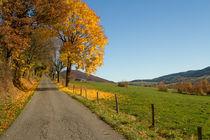 Herbst im Sauerland von Heidi Bücker