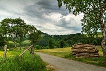 Landschaftsidylle im Sauerland von Heidi Bücker