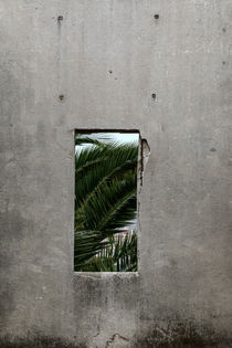 Fragment, Valparaiso, Chile by Gytaute Akstinaite