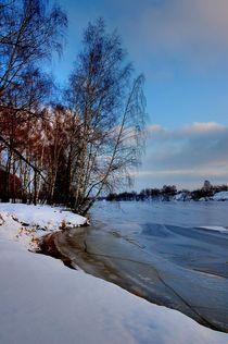 Cold beauty von Yuri Hope