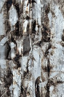 Verborgenes by Peter Norden