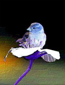 Blumenvogel von Angelika  Schütgens