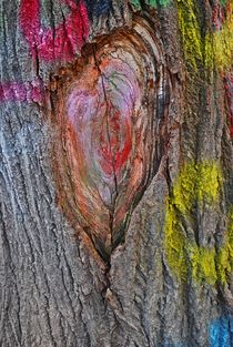 coloured tree, Prague... 1 by loewenherz-artwork