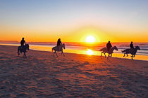 Horse riding at sunset at the beach von nilaya
