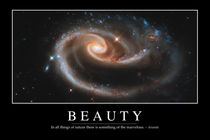 Beauty Motivational Poster von Stocktrek Images