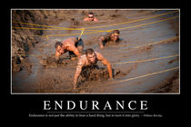 Endurance Motivational Poster by Stocktrek Images
