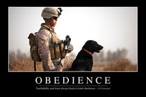 Obedience Motivational Poster by Stocktrek Images