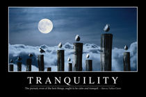 Tranquility Motivational Poster von Stocktrek Images