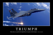 Triumph: Motivational Poster by Stocktrek Images