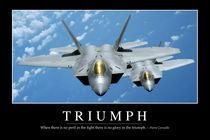 Triumph: Motivational Poster von Stocktrek Images