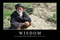 Wisdom Motivational Poster by Stocktrek Images