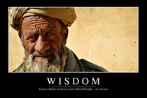 Wisdom Motivational Poster von Stocktrek Images
