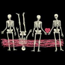 Skeletons-lovemirakle