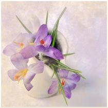 Frühlingsgruß by Irmtraut Prien