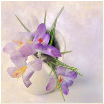 Frühlingsgruß von Irmtraut Prien