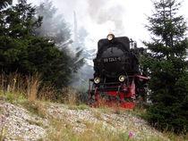 """""""Locomotive breath"""" von Hans-Georg Kasper"""