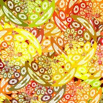 Fruity geometric abstract von Gaspar Avila