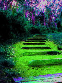 Stairway to Dreamtime by Panda Broad