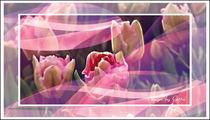 Digitaler-blumentraum-06