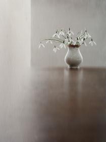 stilles Leben by Franziska Rullert