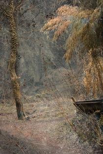 Img-bambuspark
