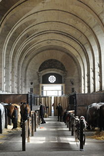 Besuch bei der Queen von cavallo-magazin