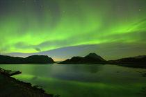 Aurora borealis - Fjord auf den Lofoten by gugigei