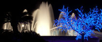 Palm Silhouettes, Fountains And Luminous Tree by Sergey Tsvetkov