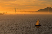 Golden Gate Bridge Golden Light by Jim Corwin