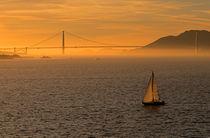 Golden Gate Bridge Golden Light by Jim Corwin