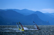 Windsurfers racing on The Columbia River by Jim Corwin