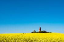 Der Leuchtturm von Bastorf by Rico Ködder
