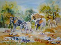 Der Weg der Elefanten von Claudia Pinkau