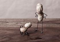 Simple Things - Mann und Hund by Nailia Schwarz